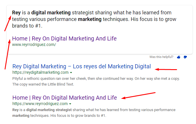 Rey on digital marketing text snippet